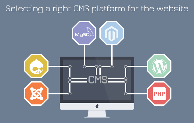 choosing the right cms for the website